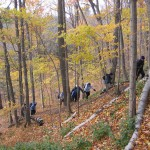 Hikers on the Seaton Trail