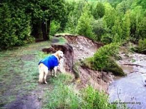 1N064 /1S028 - Erosion undercutting the trail