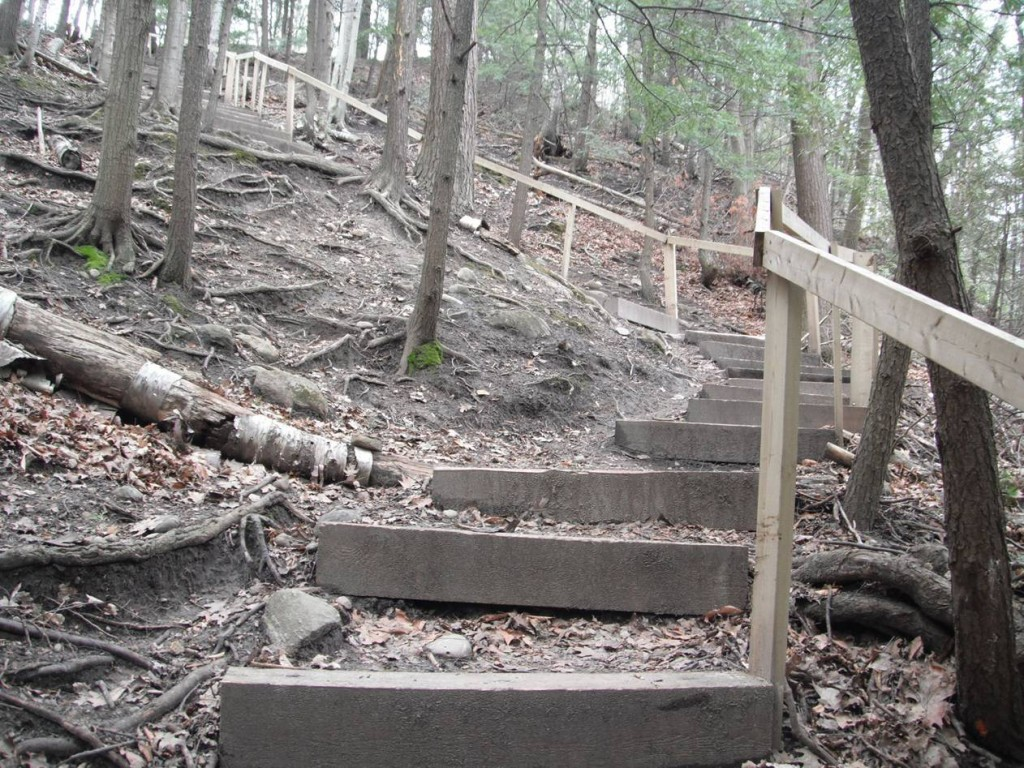 Old wooden staircase at Forestream - uphill