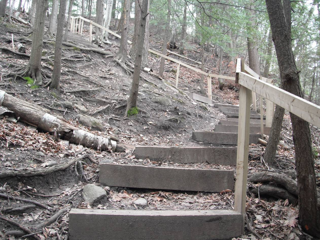 Staircase Construction At Forestream Complete Friends Of Seaton Trail