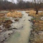Forestream and hydro line trail flooding 3